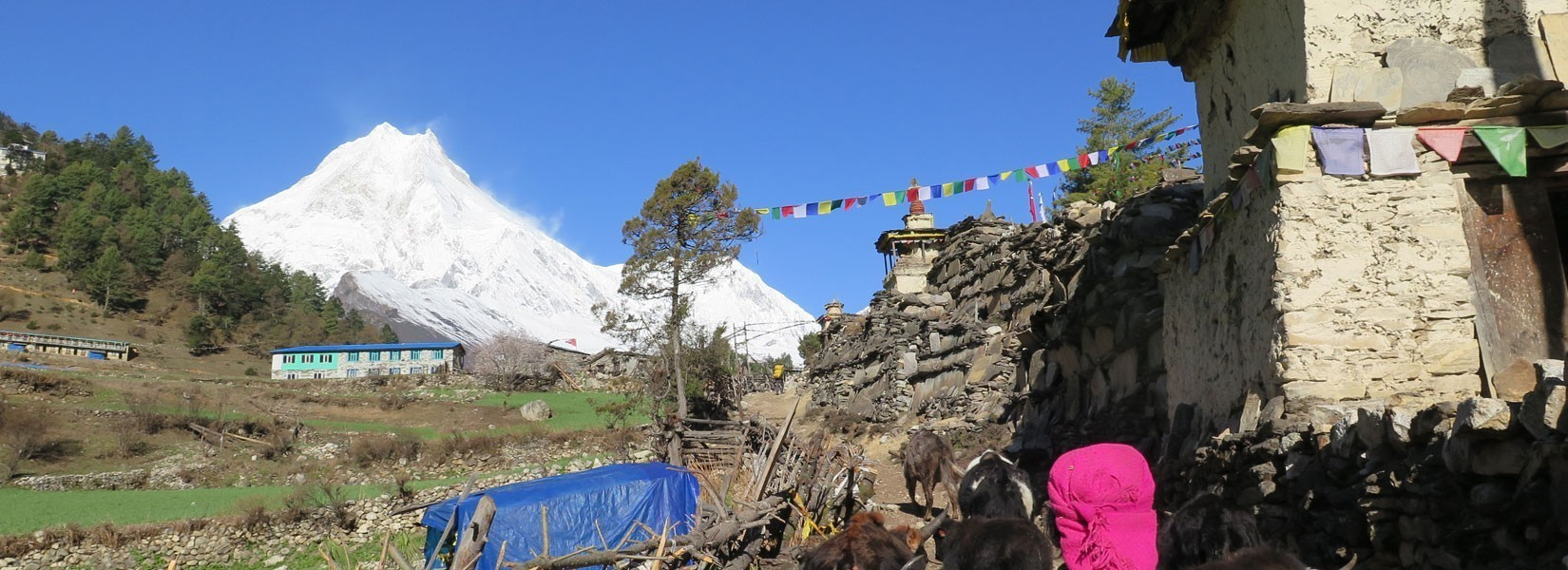 Find Out Easy and Short Trekking Trail in Nepal